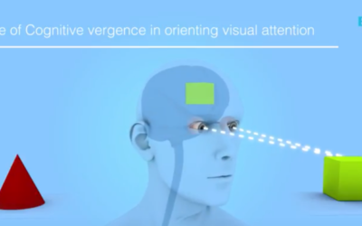 Cognitive Vergence Video
